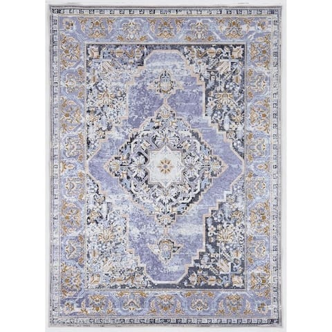 Porch & Den Toelle Distressed Medallion Pattern Area Rug