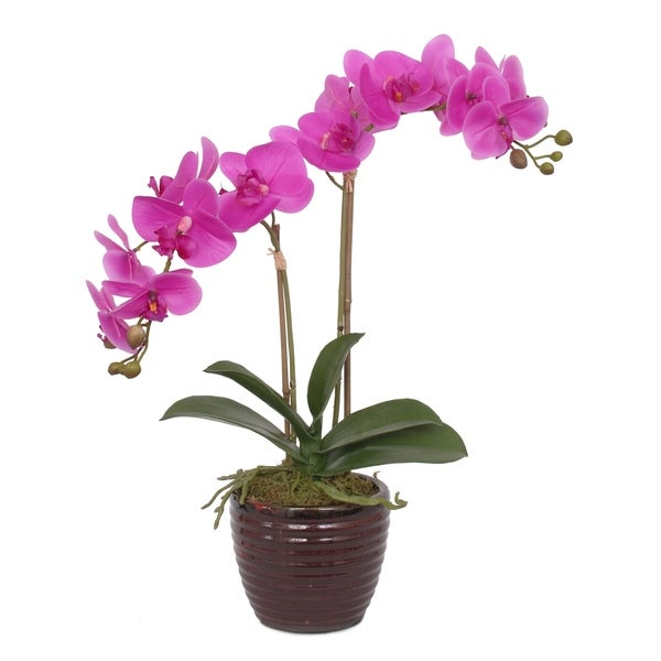 Real Touch Purple Orchid Flower Arrangement in Red Ceramic Pot