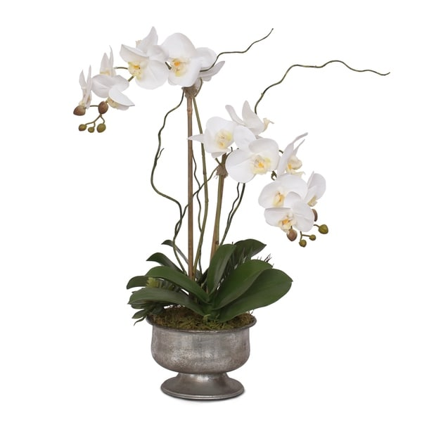Real Touch White Orchids with Succulent in Silver Aged Metal Pot
