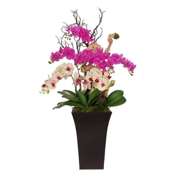 Real Touch Orchids with Grape Vine Wood in Black Zinc Metal Pot