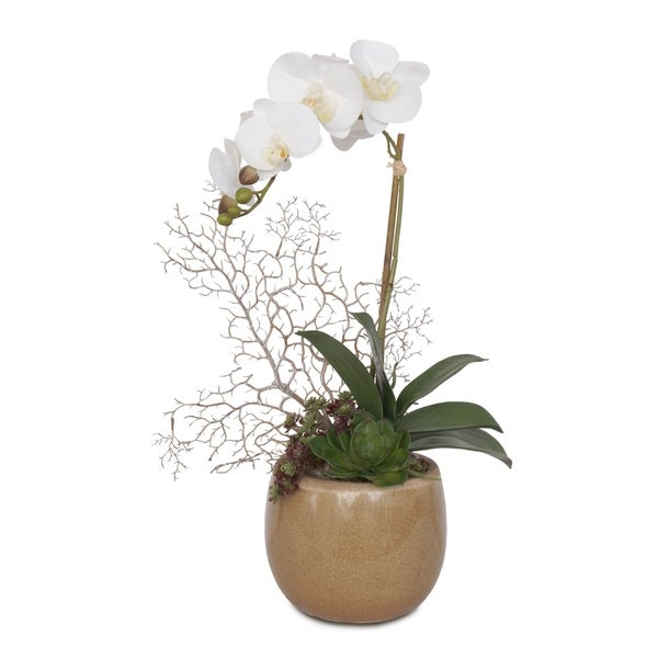 Real Touch White Orchid with Faux Coral, & Succulent in Ceramic Pot