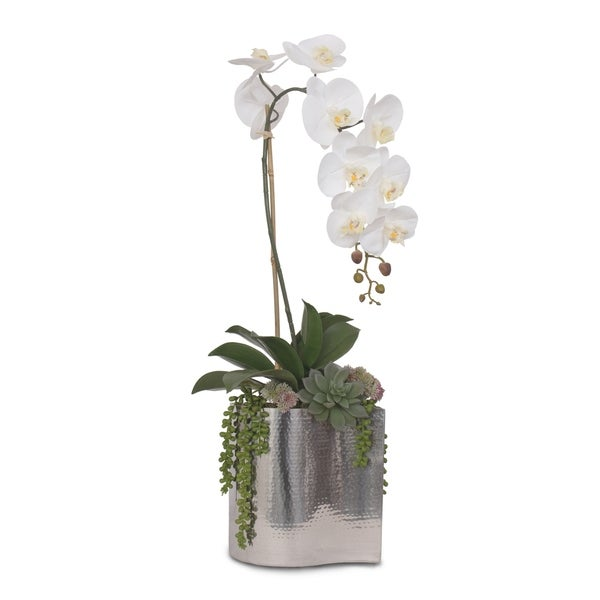 Real Touch White Orchid with Succulents in Steel Vase