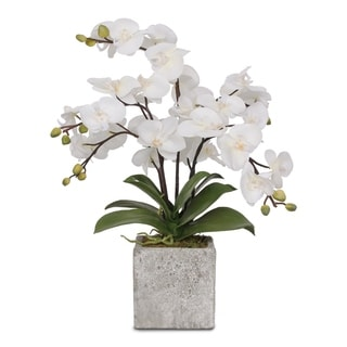 "Silk White ""Real Touch"" Orchids in a Modern Square Concrete Pot"