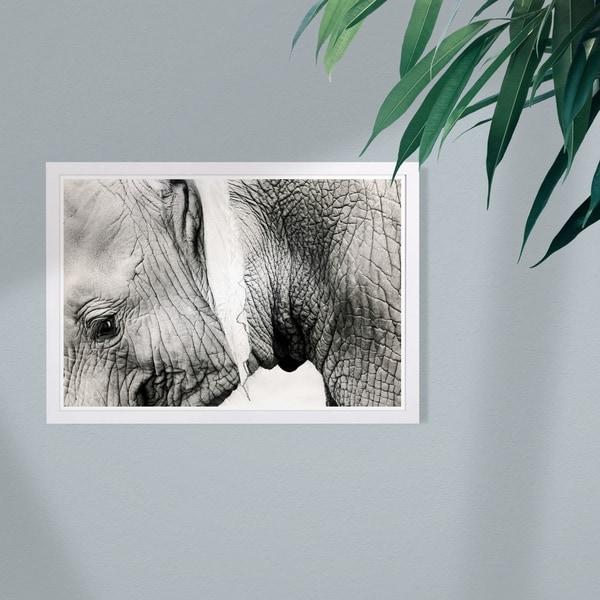 Wynwood Studio 'Gentle Giant' Animals Framed Wall Art Print - Black, White - 19 x 13