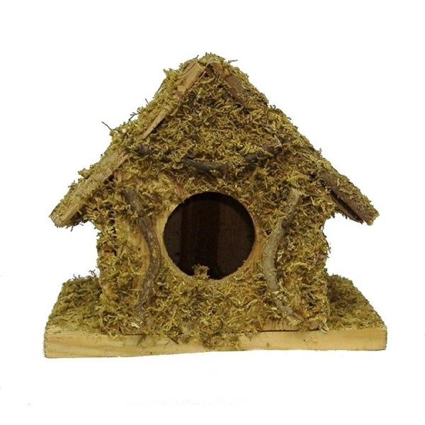 Set of 2 8-in Bird house