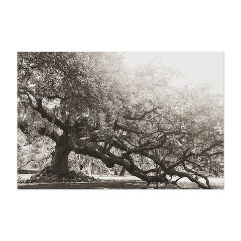 Noir Gallery Tree of Life New Orleans Louisiana Unframed Art Print/Poster