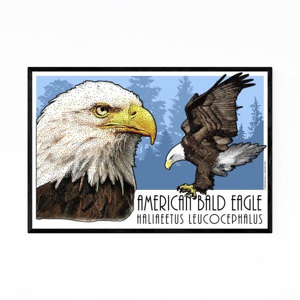Noir Gallery Bald Eagle Animal Illustration Framed Art Print