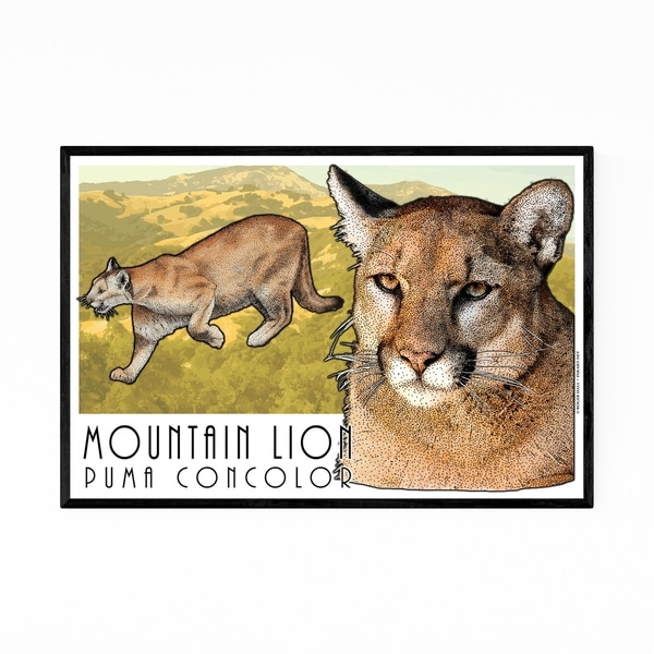 Noir Gallery Mountain Lion Animal Illustration Framed Art Print