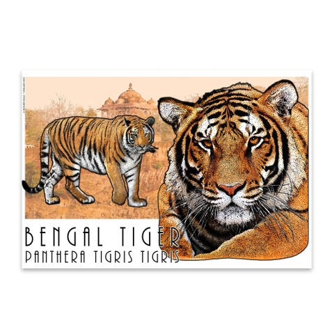 Noir Gallery Bengal Tiger Animal Illustration Metal Wall Art Print