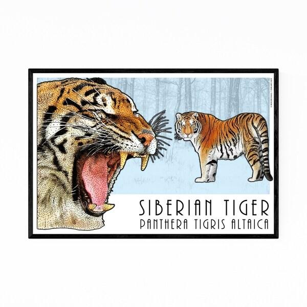 Noir Gallery Siberian Tiger Animal Illustration Framed Art Print