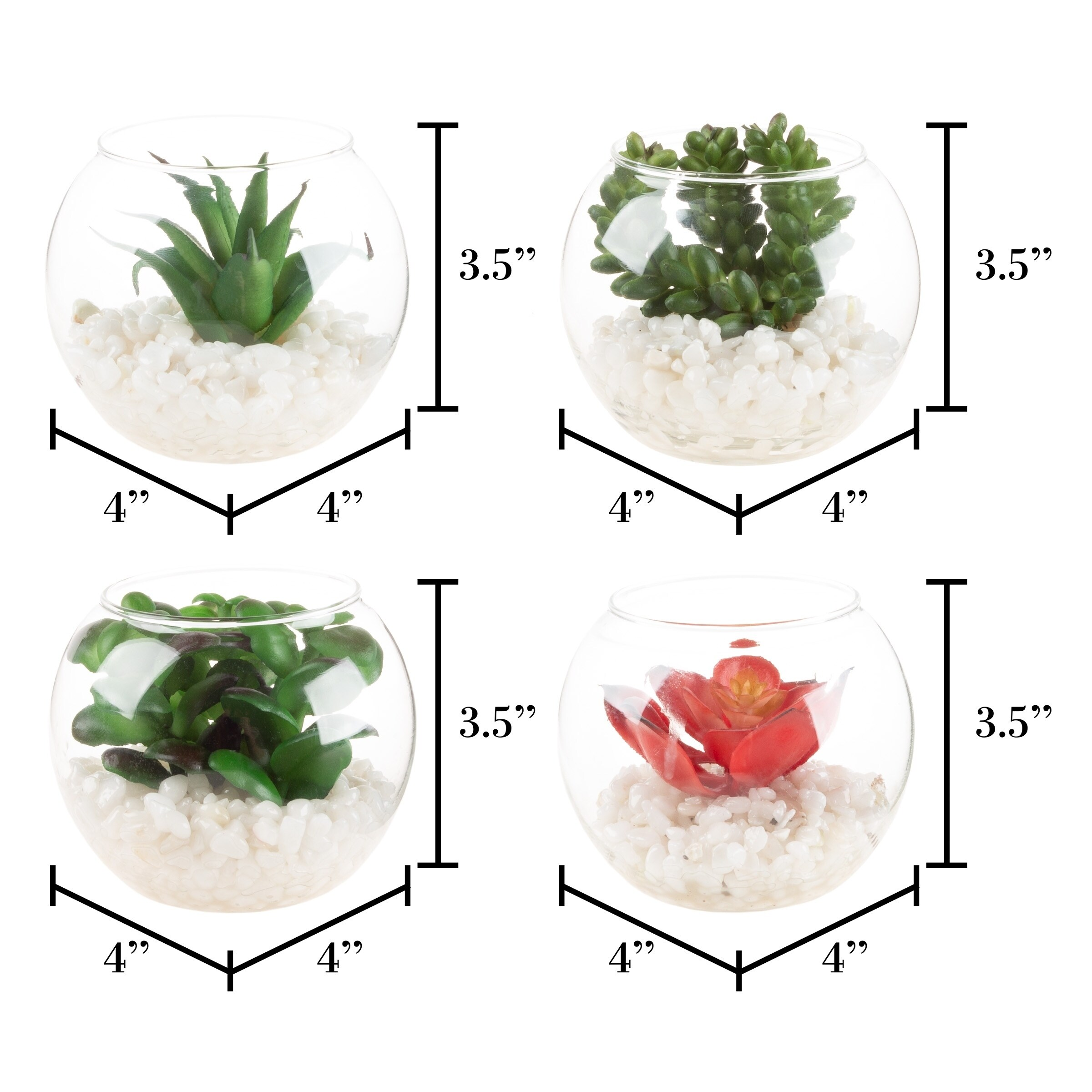 Faux Succulents Set Of 4 Assorted Lifelike Plastic Greenery Arrangements In Glass Vases By Pure Garden 3 5 X 3 5 X 4 Overstock 28988034