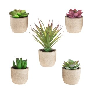 Faux Succulents – Set of 5 Assorted Lifelike Plastic Greenery Arrangements in Stone Look Pots by Pure Garden