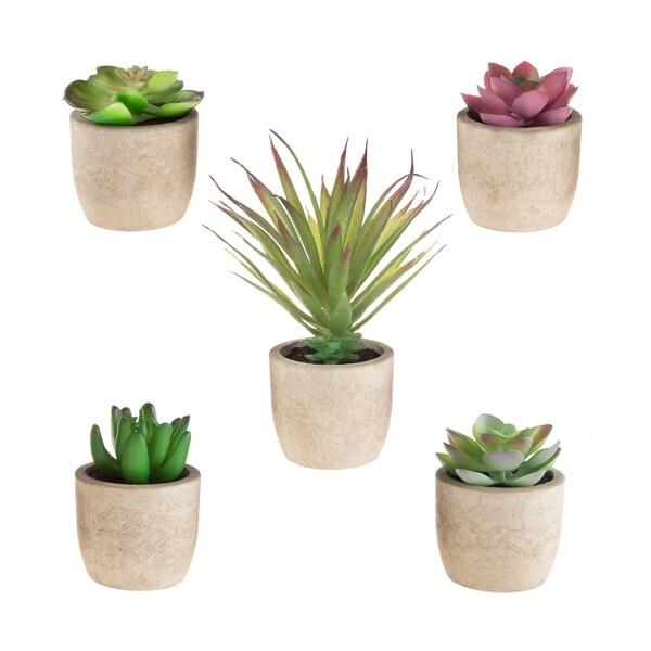 Faux Succulents – Set of 5 Assorted Lifelike Plastic Greenery Arrangements in Stone Look Pots by Pure Garden