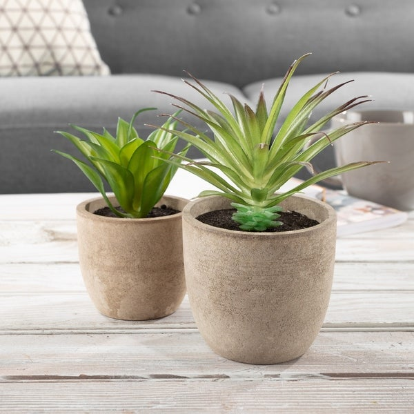 Faux Aloe Plant Arrangements - Set of 2 Lifelike Plastic Succulent Greenery in Stone Look Pots by Pure Garden