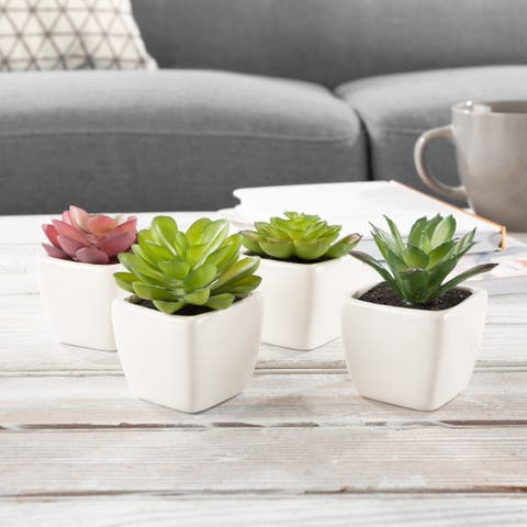 Faux Succulents  Set of 4 Assorted Lifelike Plastic Greenery Arrangements Decorative Ceramic Pots by Pure Garden