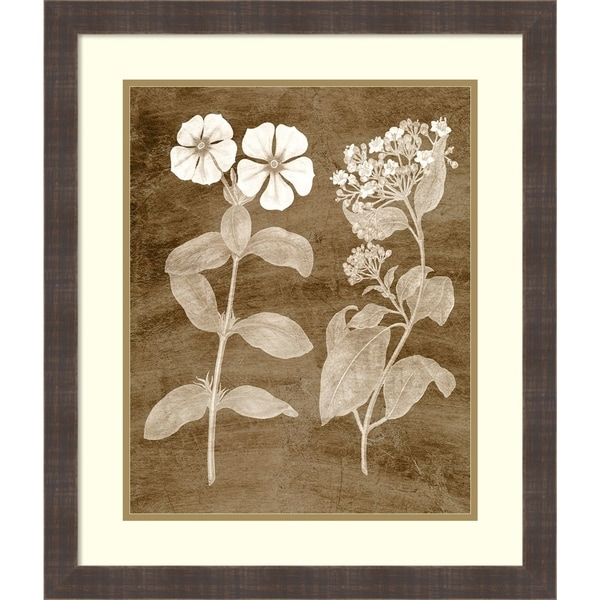 Framed Art Print 'Botanical in Taupe IV' by Vision Studio - 22x26-inch