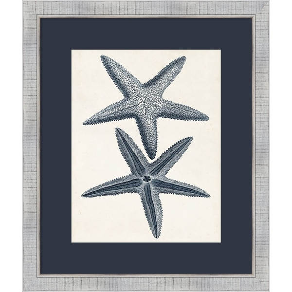 Framed Art Print 'Coastal Collection in Indigo II' - 23x27-inch