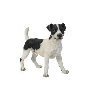 Standing Jack Russell