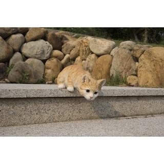 Cat Looking Over Ledge - Orange Tabby