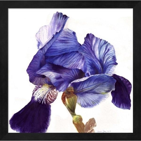 Doris Joa 'Blue Iris' Framed Art