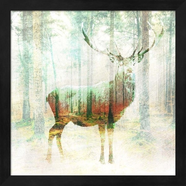 Arlo Wren Photos 'Lord of the Woods (detail)' Framed Art