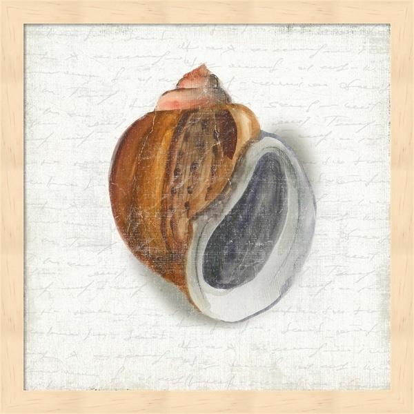 Aimee Wilson 'Seashell Portrait I' Framed Art
