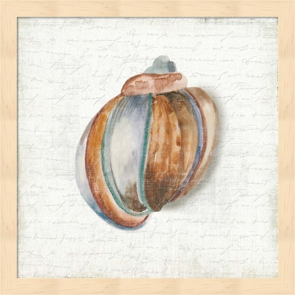 Aimee Wilson 'Seashell Portrait II' Framed Art