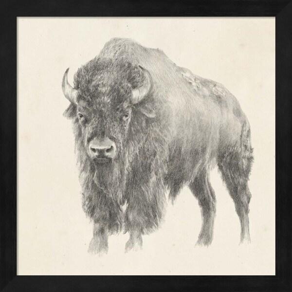 Ethan Harper 'Western Bison Study' Framed Art