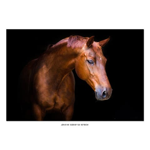 """Oppidan Home """"Pensive Mare"""" Acrylic Wall Art (32""""H X 48""""W) - Multi - Red, Brown"""