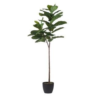 Green 59-inch Fiddle-Leaf Fig Tree