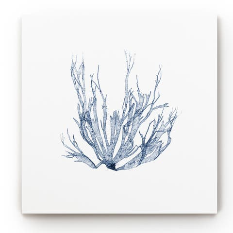 Navy Seaweed IV -Gallery Wrapped Canvas