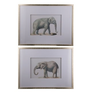 Silver Framed Elephant Pencil Drawings (Set of 2)