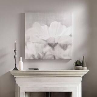 Daisy Daydreams Printed Canvas Wall Art - Grey