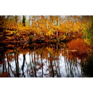 CANVAS Fall Pond Colors II By Jobe Waters  Graphic Art Photography