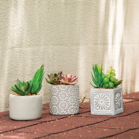 Glitzhome Set of 3 Artificial Succulent Plants in Cement Pots