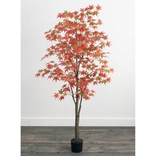 """Autumn Maple Tree - 6'h - 32""""L x 32""""W x 6'H"""
