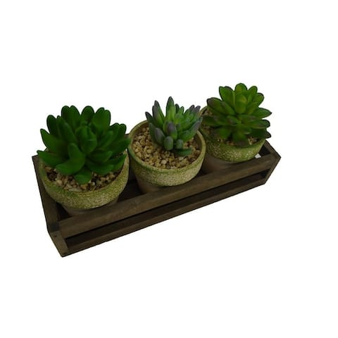 Admired By Nature Artificial Mini Succulents in Glass Jar with Rustic Metal Basket