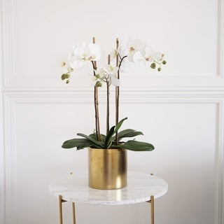 Faux Triple Phalaenopsis Orchid in Ceramic Vase
