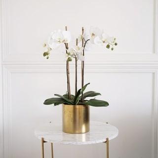 Faux Triple Phalaenopsis Orchid in Ceramic Vase