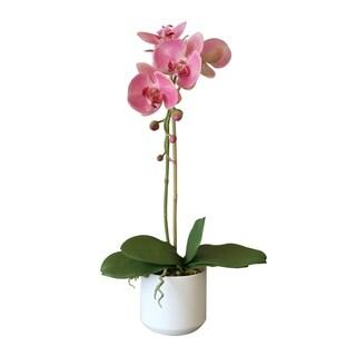 Faux Pink Phalaenopsis Orchid Arrangement in White Ceramic Vase