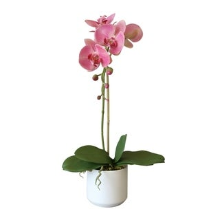 Faux Pink Phalaenopsis Orchid Arrangement in White Ceramic Vase