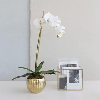 Faux White Orchid Arrangement in Gold Round Ceramic Vase
