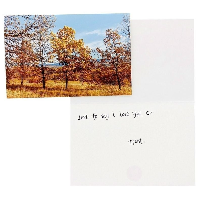 48 Glossy Blank Landscape Greeting Cards with Plain Kraft Brown Envelopes