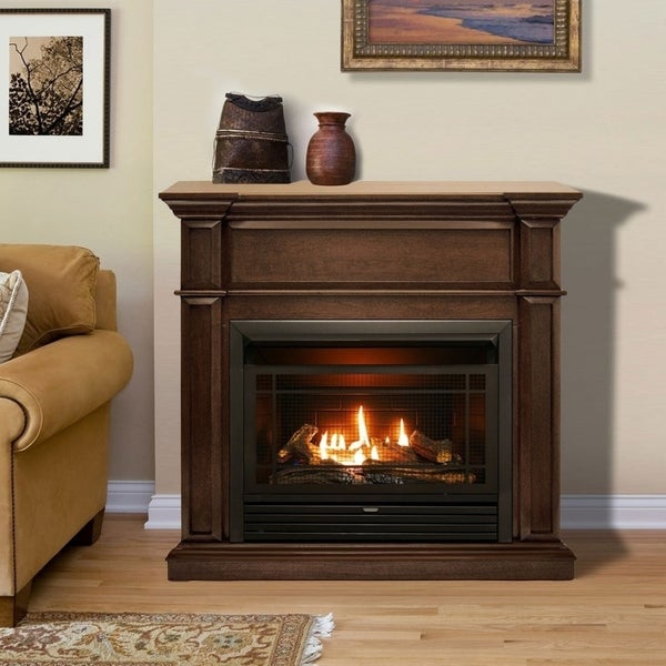 Shop Duluth Forge Dual Fuel Ventless Gas Fireplace With