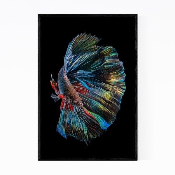 Noir Gallery Betta Fish Animal Photography Framed Art Print