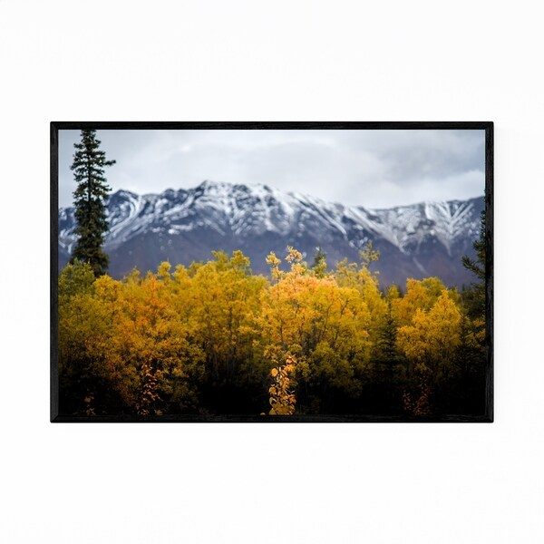 Noir Gallery Wrangell-St. Elias Alaska Nature Framed Art Print