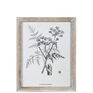 "UTC17512: Wood Rectangle Wall Art with ""Conium Maculatum or Hemlock"" Rough Finish White - N/A"