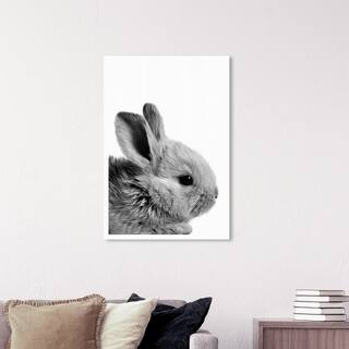 Wynwood Studio 'Bunny Ears' Animals Wall Art Canvas Print - Gray, White