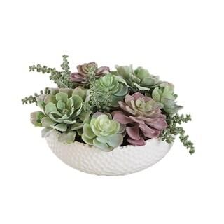 Faux Mixed Succulent Arrangement Plant in Ceramic Round Vase