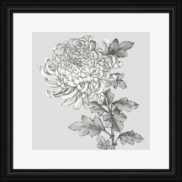 Eva Watts 'Grey Botanical I' Framed Art